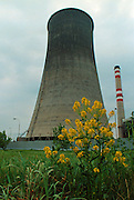 Teresin, Litomerice, CZE, 19920507: A cooling tower at a coal plant in the heavy polluted industrial area near Teresin.