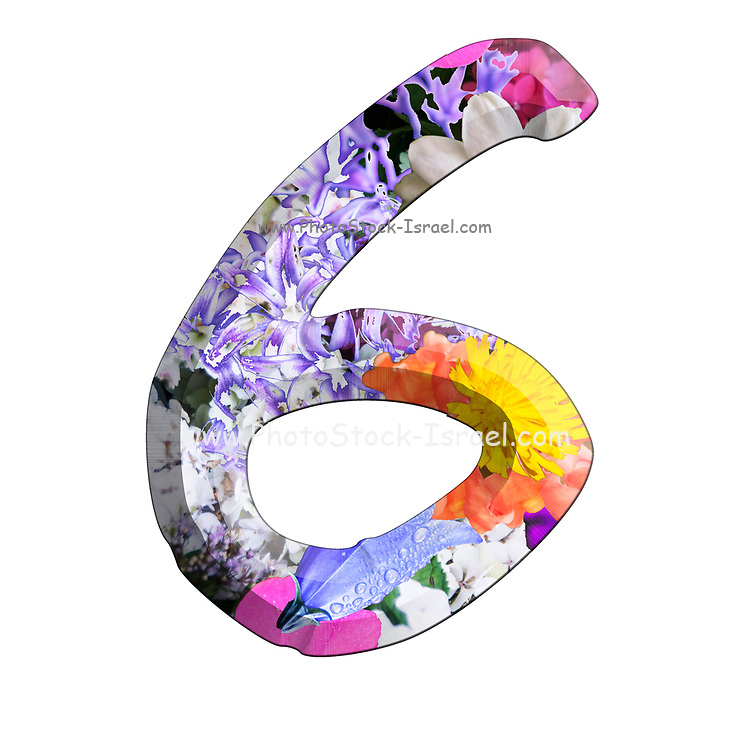 The number Six Part of a set of letters, Numbers and symbols of 3D Alphabet made with colourful floral images on white background