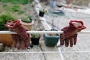 drying garden gloves