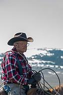 Lyle Woosley, 79 yrs, helping neighbor,  Hamm Ranch, branding. Wilsall, MT