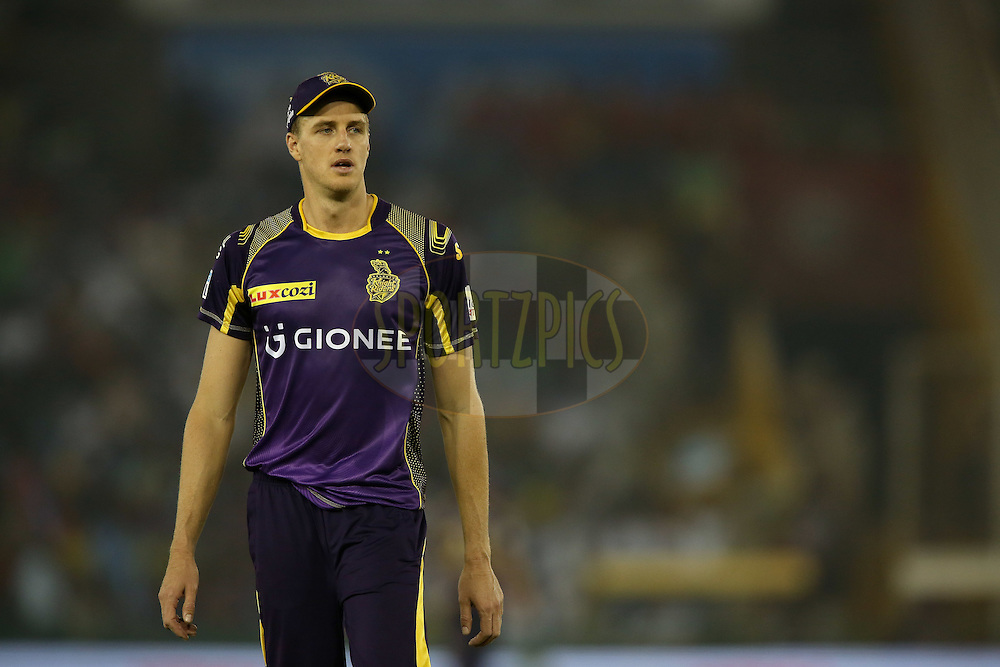 Morne Morkel of Kolkata Knight Riders during match 13 of the Vivo Indian Premier League (IPL) 2016 between the Kings XI Punjab and the Kolkata Knight Riders held at the IS Bindra Stadium, Mohali, India on the 19th April 2016<br /> <br /> Photo by Shaun Roy / IPL/ SPORTZPICS
