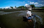 Kusamba, black volcanic beach. Drenching sand with sea water for salt extraction.