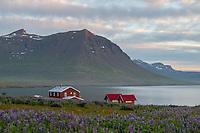 Skálanes in Seyðisfjörður, East fiords of Iceland.