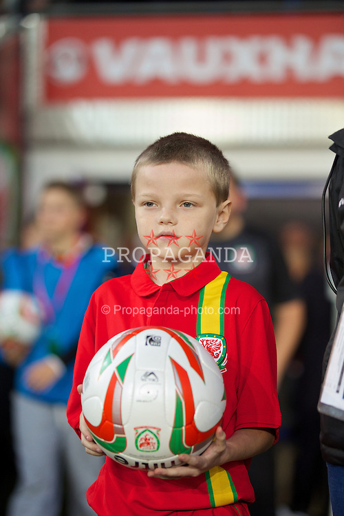 CARDIFF, WALES - Tuesday, September 10, 2013: The ball carrier before the 2014 FIFA World Cup Brazil Qualifying Group A match between Wales and Serbia at the Cardiff CIty Stadium. (Pic by David Rawcliffe/Propaganda)
