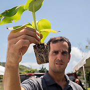 AUGUST 27, 2018--PATILLAS---PUERTO RICO--<br /> Mercy Corps staff member Salvador Coleman holds up a small plant at a GUPE outreach event with local farmers.<br /> (Photo by Angel Valentin/Freelance)