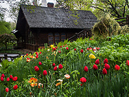 Shakespeare Garden and the Swedish Cottage in Central Park