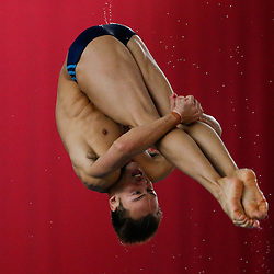British Gas Diving Championships - February 2015