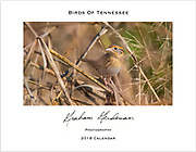 2018 Birds of Tennessee Calendar - 8x11<br />