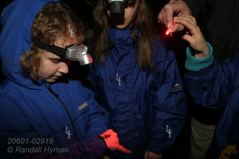 Ecoteach participant Soley Hyman (age 9) admires glowing firefly during night hike in cloud forest of Monteverde, Costa Rica.