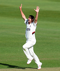Somerset's Tim Groenewald unsuccessfully appeals for the caught behind decision of Middlesex's Adam Voges. - Photo mandatory by-line: Harry Trump/JMP - Mobile: 07966 386802 - 29/04/15 - SPORT - CRICKET - LVCC Division One - County Championship - Somerset v Middlesex - Day 4 - The County Ground, Taunton, England.