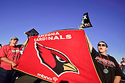 Jan. 26, 2009 -- PHOENIX, AZ: Arizona Cardinals fans wave team flags during a pep rally for the team at Sky Harbor Airport in Phoenix after the team left for Tampa to play in the Super Bowl. The Arizona Cardinals are in the Super Bowl for the first time in the team's history. They defeated the Philadelphia Eagles to win the NFC Championship on Jan 18. With a record of 9 - 7 they have one of the worst records of any team to make the Super Bowl. Before this year they had a total of two playoff victories in the team's 111 year history, in 1947 when they won the league championship, and 1998 in a wild card game against the Dallas Cowboys. They face the Pittsburgh Steelers in Tampa on Feb. 1.    Photo By Jack Kurtz / ZUMA Press