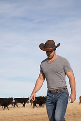 cowboy on a cattle ranch