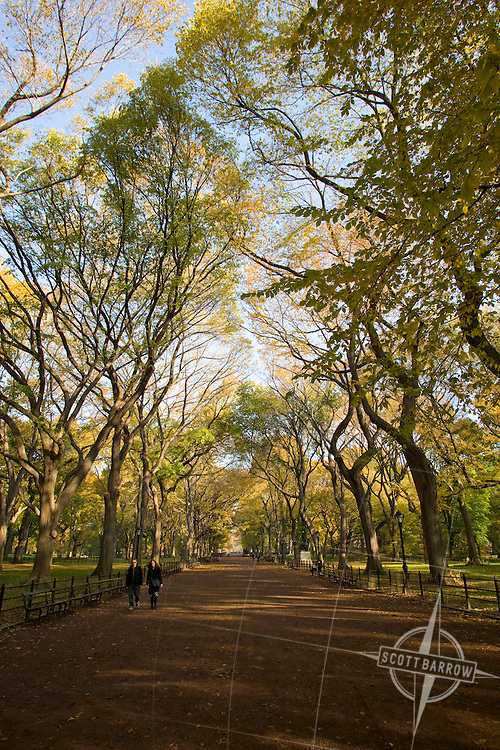 The Mall in Central Park NYC
