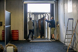 Departure of the horses for Calgary at Liege Airport, Belgium<br /> <br /> Spruce Meadows Masters - Calgary<br /> © Hippo Foto - Dirk Caremans<br /> 01/09/2018