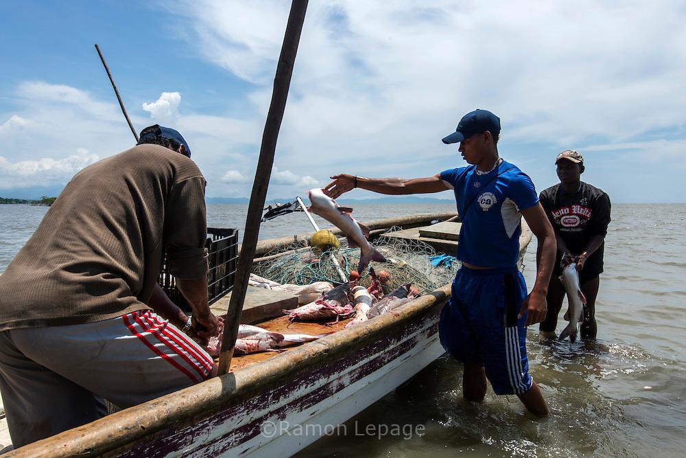Pescadores artesanales limpiando los pescados al llegar  a la costa.  Pueblo de Taimati en la costa del  golfo de San Miguel, Provincia de Darien,  Océano Pacífico de Panamá.   El golfo de San Miguel es el estuario más grande de Panamá, con una extensión de unos 1,760 km2.  La comunidad de Taimati  esta conformada por indígenas Embera-Wounaan y criollos dedicados principalmente a la pesca artesanal y cultivos como el arroz, yuca y plátanos.
