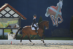 Langehanenberg Helen, (GER), Suppenkasper<br /> Nurnberger Burg-Pokal - St George Special<br /> Horses & Dreams meets Denmark - Hagen 2016<br /> © Hippo Foto - Stefan Lafrentz