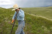 Andi Mitchell, Preserve Steward for The Nature Conservancy's Zumwalt Prairie Preserve, repairs a fence line in preparation to open the grassland to cattle grazing. The old barbed wire fence is being maintained  to contain cattle while allowing wildlife, such as elk and deer, to pass. (Fully released)