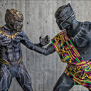 Cosplayers Killmonge and Tichaka in their costumes from the Black Panter movie at the New York ComicCon 18.<br /> <br /> More than 200,000 people attended the event dressed up as their favorite superhero to celebrate comic books, sci-fi and video games.<br /> <br /> The New York Comic Con convention, is a  celebration of comic books, graphic novels, sci-fi and video games, toys, movies and television.