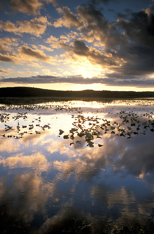 Sunset over Watson Lake, Kenai National Wildlife Refuge, Kenai Peninsula, Alaska, USA