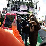TOYO; SEMA Show November 2015, LVCC Las Vegas, NV : Marguerite Schumm