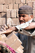 bricks are piled onto horses in a factory on the outskirts of peshawar, pakistan. the majority of workers at this particular factory were from Afghanistan, and are living as refugees in Pakistan.