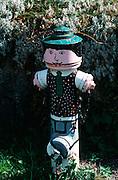 Deutschland, Germany,Baden-Wuerttemberg.Schwarzwald.Menzenschwand, bemalter Hydrant.Menzenschwand, painted hydrant...
