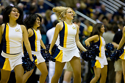 February 13, 2010; Berkeley, CA, USA;  California Golden Bears cheerleaders perform during the first half against the Washington State Cougars at the Haas Pavilion.  California defeated Washington State 86-70.