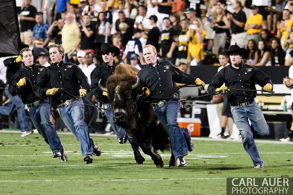 September 7th, 2013 - Ralphie the Buffalo takes to the field prior to the start of second half action in the NCAA football game between the University of Central Arkansas Bears and the University of Colorado Buffaloes at Folsom Field in Boulder, CO, CO