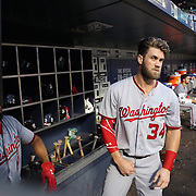 NEW YORK, NEW YORK - July 07: Anthony Rendon #6 of the Washington Nationals and Bryce Harper #34 of the Washington Nationals in the dugout preparing to bat during the Washington Nationals Vs New York Mets regular season MLB game at Citi Field on July 07, 2016 in New York City. (Photo by Tim Clayton/Corbis via Getty Images)