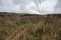 Campagna Monyi Dauni nei pressi di Biccari (Foggia)<br /> <br /> Il Subappennino Dauno (noto anche con i toponimi Monti Dauni o Monti della Daunia, la mundàgne o u Appenníne in foggiano) è una catena montuosa che costituisce il prolungamento orientale dell'Appennino sannita. Essa occupa la parte occidentale della Capitanata e corre lungo il confine della Puglia con il Molise e la Campania.