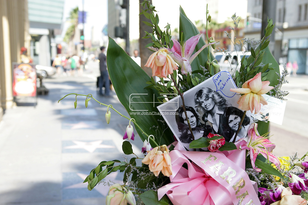 27th June 2009. Hollywood, California. Flowers on Farrah Fawcett's star on the Hollywood Walk of Fame. The former Charlie's Angeles actress died on the same day as singer Michael Jackson.  PHOTO © JOHN CHAPPLE / www.chapple.biz