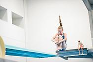 10-06-2018: Schoonspringen: NK jeugd: Amersfoort<br /> <br /> Beeld van het NK schoonspringen ( 17 jaar en jonger) op 10 juni 2018 in zwembad Amerena in Amersfoort<br /> <br /> Foto: Gertjan Kooij