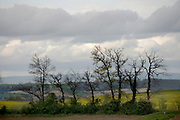 rural landscape view France Languedoc during spring season