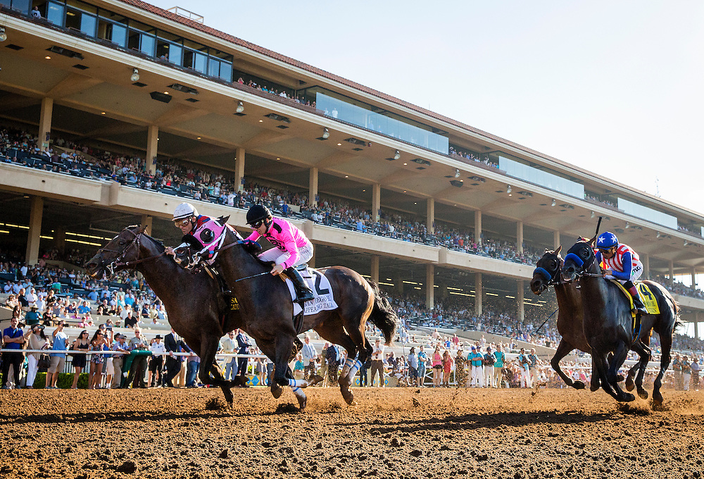 July 25 2015: Catch A Flight with Gary Stevens (left) rallies past Appealing Tale and Joe Talamo to win the San Diego Handicap at Del Mar Race Course in Del Mar CA. Alex Evers/ESW/CSM