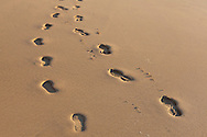 Footprints in the sand, Ferragudo, Algarve, Portugal