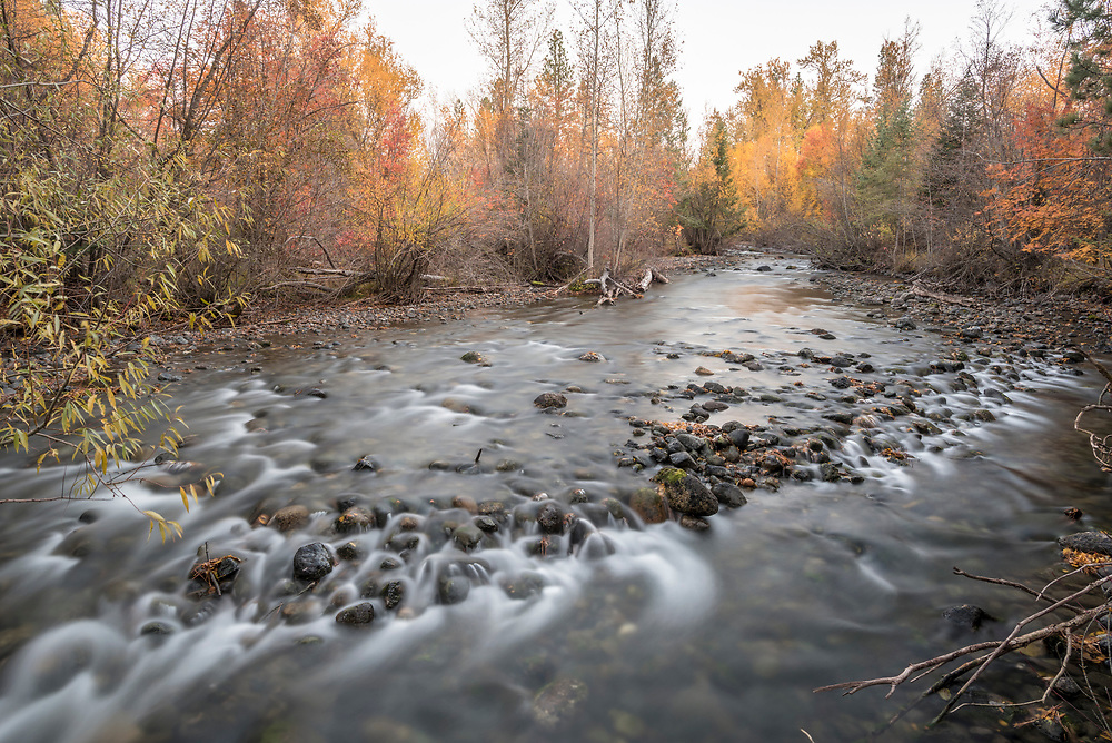 The Wallowa River flowing through Oregon's Wallowa Valley on an autumn day.