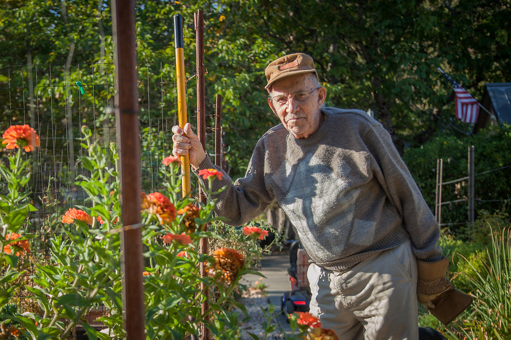 """Neighbor and gardener Orvil Riedberger works his gardens on a Sunday morning in downtown Calistora.  """"My garden was not the best this year...Like me, I think the soil is all played out."""""""