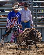 Sheep Riding