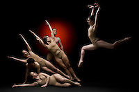 FrenetiCore Dance maintains a company of artists who perform collaborative and innovative multi-media dance.