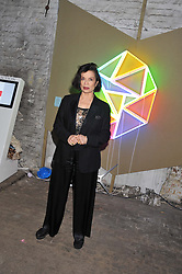 BIANCA JAGGER at the Contemporary Art Society's Gala evening held at the Farmiloe Buildings, St.John Street, London EC1 on 29th February 2012.