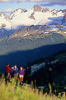 Family hikes a ridge on Whistler Mountain with the Overlord Glacier rising behind them. Whistler, BC Canada.