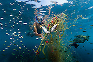 Boulder Island, Mergui Archipelago, Myanmar, April 2016.  Manuel Marinelli of Project Manaia pulls an entangled fishing net out off the coral reef. Even though the net was abandonned, it kept cathing fish. Project Manaia researches the Mergui Archipelago, Myanmar to help protect this remote island group for future generations and keep it as pristine as it is now. Manaia aims to provide a platform for independent scientists as well as camera teams to get them on the location for documentation and scientific work on Climate change issues, ocean acidification, plastic gyres and others. Photo by Frits Meyst / MeystPhoto.com
