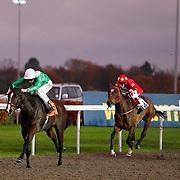 Kempton 21st November 2012