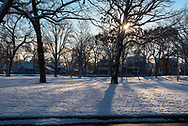 Sun shines through the trees in a suburban park on a cold snowy morning.