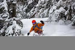 THEMENBILD - ein Freerider im Tiefschnee, aufgenommen am 23.02.2018, Trofaiach, Österreich // a Freerider in powder, taken on 2018/02/23, Trofaiach, Austria, EXPA Pictures © 2018, PhotoCredit: EXPA/ Dominik Angerer