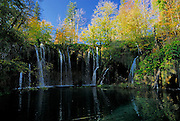 Several small waterfalls emptying into lake, with autumn coloured trees. Plitvice National Park, Croatia