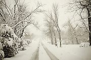 Black and white sepia toned photo of a country road during a snow storm.