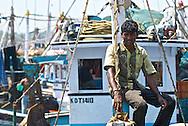 Fisherman at Mangalore fish market, India
