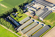 Nederland, Noord-Brabant, Gemeente Deurne, 23-08-2016; varkensboerderij met megastallen ten oosten van Deurne in De Peel. Varkensfokkerijen zijn rijk vertegenwoordigd in dit deel van Brabant.<br /> Pig farm with megastalls east of Deurne in the Peel. Breeding pigs are well-represented in this part of Brabant.<br /> aerial photo (additional fee required); <br /> luchtfoto (toeslag op standard tarieven);<br /> copyright foto/photo Siebe Swart