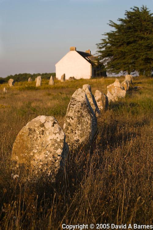 Megaliths, Carnac, Morbihan, Brittany, France